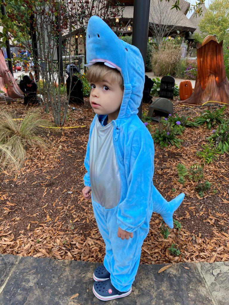 Baby Shark do-doo-do-do-doo
